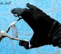 hand-clipper-glove-1
