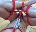 predicament-bondage-7