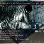 Ms-Tytania-slave-in-cage