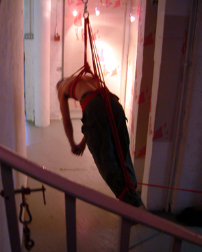 femdom mistress bondage hogtie